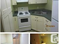 700 sq foot 1br & den basement collection readily