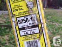 12' electrician's step ladder. Werner Electro master