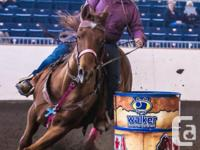 Reg 12 year old quarter horse. Is a seasoned barrel