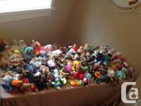 This is a TY Beanie Baby collector or young child's