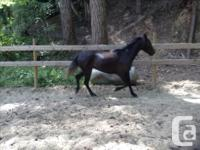 Gorgeous mover. Ariel is now 4 years old (June 11) and