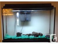 Complete Aquarium Kit. Bring the miracle of aquatic
