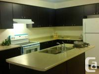 Beautiful 3 + 1 bedroom Townhouse with walk out