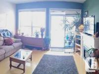 Beautiful, modern-day, large 2 BDR Garneau Apartment -