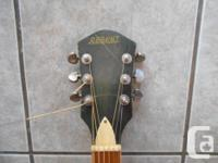1960's Regent Acoustic Guitar - Grover tuners - new