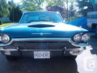 Make Ford Model Thunderbird Year 1965 Colour Turquoise