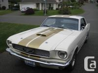1966 Mustang Hardtop. Whimbledon white with gold