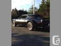 1981 Trans Am, all new ZZ4 350 Chevy crate engine,