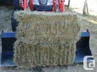 1rst cut hay for sale. Low sugar. $8.50/bale Bales