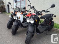 Nouveau rabais de 500$, Honda Scooter Ruckus 50 cc,