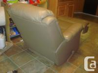 I have a 2 in 1 Genuine Leather Recliner Rocking Chair