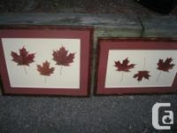 2 Leaf Pictures Had them in hallway but changed decor &