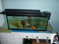 the tank is a 20 gallon long, the size its about 30L x