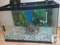 Great 20 gallon set-up aquarium comes with crushed