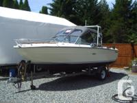 20' SeaRay. Chev 350. Stainless steel prop. Alfa One