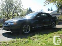 Make Ford Model Mustang Year 2000 Colour Black kms