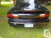 Make Chevrolet Model Camaro Year 2002 Colour Black kms