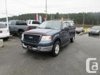 Make Ford Model F-150 Year 2004 Colour Blue kms 189000