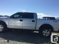 Make Ford Model F-150 Year 2004 Colour Silver kms