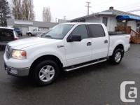 Make. Ford. Model. F-150. Year. 2004. Colour. white.