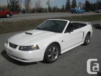 Here's your new summer drop top cruiser!!!  04 Mustang
