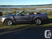 Make Ford Model Mustang Year 2006 Colour gray kms