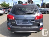 Make Hyundai Model Santa Fe Year 2007 Colour Blue kms