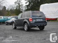 Make Ford Model Escape Year 2008 Colour Green kms
