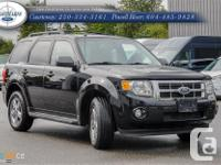 Make Ford Model Escape Year 2009 Colour Black kms