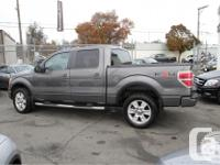 Make Ford Model F-150 Year 2009 Colour Grey kms 179625