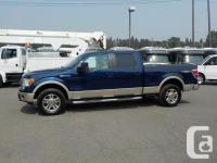 Make Ford Model F-150 Year 2009 Colour Blue kms 167212