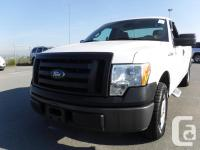 Make Ford Model F-150 Year 2009 Colour White kms 92045