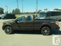 Make Ford Model F-150 Year 2009 Colour Brown kms