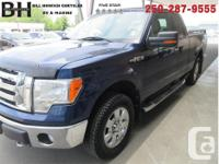 Make Ford Model F-150 Year 2009 Colour Blue kms 133015