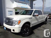 Make Ford Model F-150 Year 2009 Colour White kms