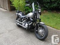 "2009 Harley Davidson FLSTSB Cross Bones - the ""JESTER"""