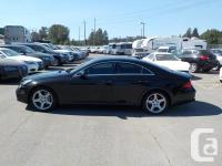 Make Mercedes-Benz Model CLS-Class Year 2009 Colour