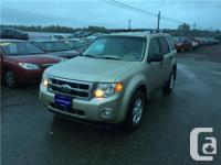Make Ford Model Escape Year 2010 Colour BEIGE kms