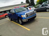Make Ford Model F-150 Series Year 2010 Colour blue kms