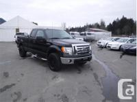 Make Ford Model F-150 Year 2010 Colour Black kms