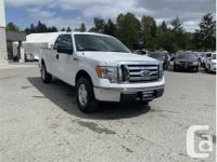 Make Ford Model F-150 Year 2010 Colour White kms 88261