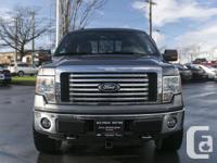 Make Ford Model F-150 Year 2010 Colour GRAY kms 158800