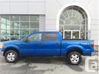 Make Ford Model F-150 Year 2010 Colour Blue kms 165001