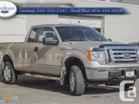 Make Ford Model F-150 Year 2010 Colour Beige kms