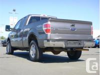 Make Ford Model F-150 Year 2010 Colour Grey kms 71311