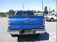 Make Ford Model F-150 Year 2010 Colour Blue Flame kms