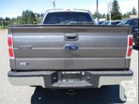 Make Ford Model F-150 Year 2010 Colour Sterling Grey