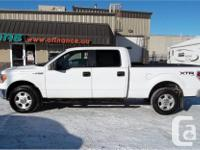 Make Ford Model F-150 Year 2010 Colour White Platinum