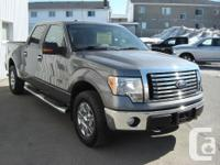 Make Ford Model F-150 SuperCrew Year 2010 Colour Grey