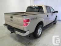 Make Ford Model F-150 Year 2010 Colour brown kms